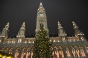 Rathaus & its fabulous Christmas tree