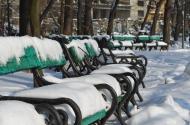 Conversatie sinuoasa. Parcul Cismigiu. Bucuresti. 28.01.2012. Foto: ©Slowaholic