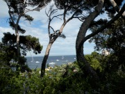 St Jean - Cap Ferrat, Franta