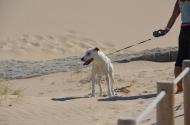 Praia do Guincho. Guincho Beach. Portugal 2013, Photo: ©SLOWAHOLIC