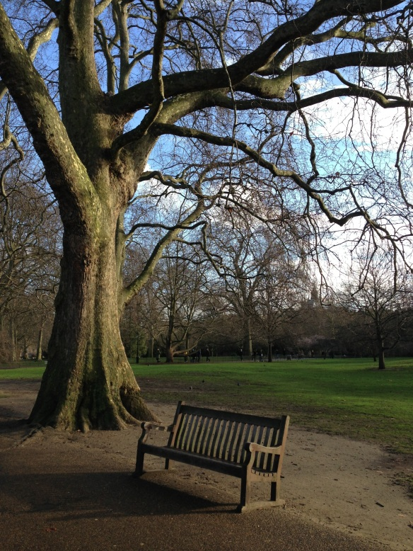 Silence. St James' Park. London. January 2014 Photo: ©SLOWAHOLIC