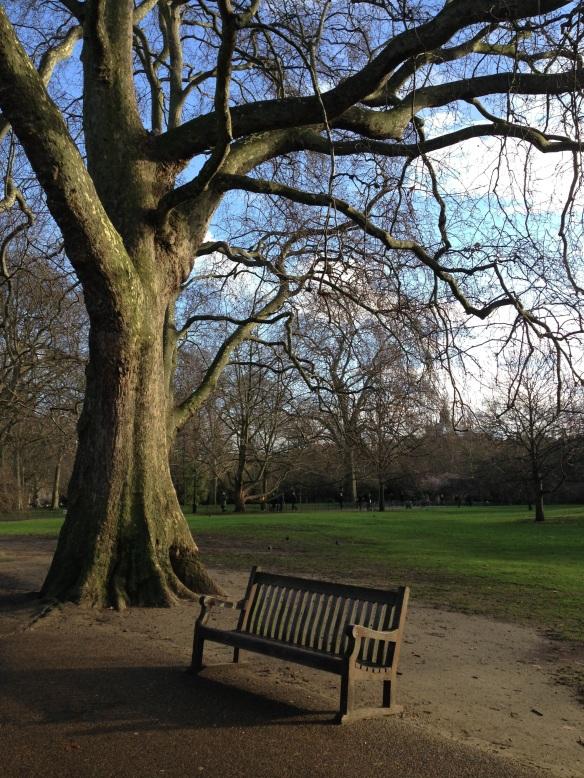 Silence. St James' Park. London. January 2014 Photo: ©SLOWAHOLIC