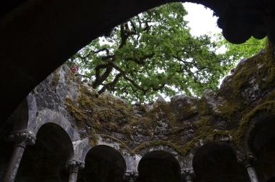 Putul Initierii. Initiatic Well. Quinta da Regaleira, Sintra, Portugal. Photo: ©SLOWAHOLIC