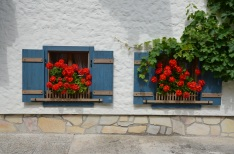 Red Geraniums. Sankt Gilgen, Austria. July, 2014. Photo: ©SLOWAHOLIC