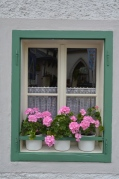 Pink Geraniums. Sankt Gilgen, Austria. July, 2014. Photo: ©SLOWAHOLIC