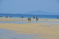 Reflux. Low tide. Ko Phi Phi. Foto: ©Slowaholic