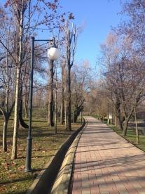 Parcul Bordei, București. Foto: ©SLOWAHOLIC