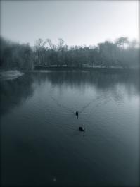 V. Parcul Bordei, București. Foto: ©SLOWAHOLIC
