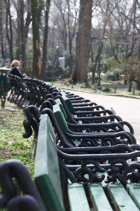 Row. Cișmigiu Park, Bucharest. Photo: ©Slowaholic