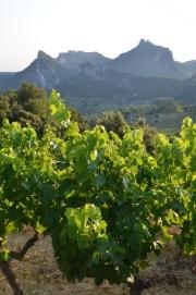 Sudul Franței. Foto: ©Slowaholic
