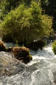 Râul Sorgue aproape de izvor. Fontaine de Vaucluse. Foto: ©Slowaholic