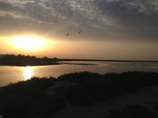 Camargue, mlaștini la apus. Foto: ©Slowaholic